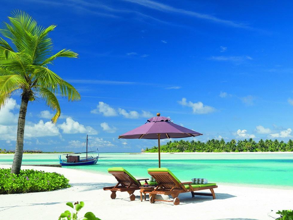 maldivy-page